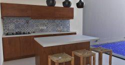 Villa Estella in Petitenget – AY1203