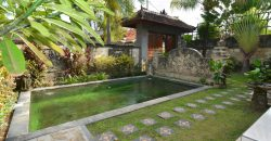 Bali Long Term Rental Villa Elsa in Sanur