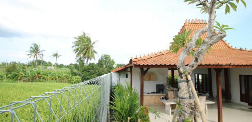 Bali Long Term Rental Villa Emilia in Pererenan