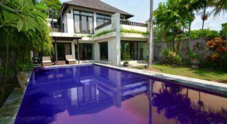 Bali Long Term Rental Villa Dani in Pererenan