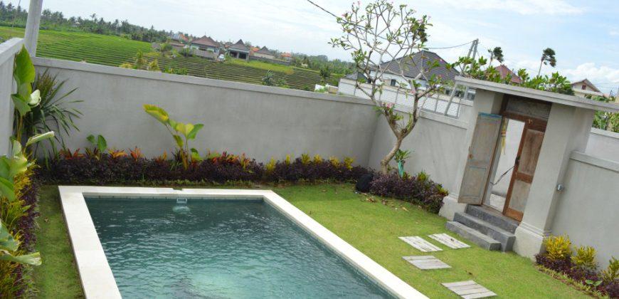 Villa Alejandra in Canggu – AR106
