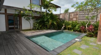 Bali Long Term Rental Villa Warna in Pererenan