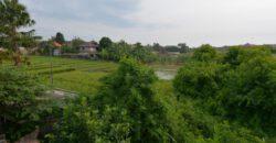 Villa Milan in Canggu – AY949