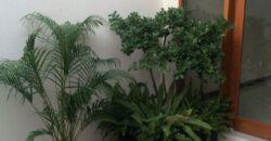 Villa Egypt in Kerobokan – AY951