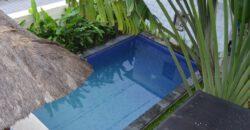 Villa Blue Hibiscus in Petitenget – AR054