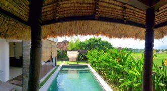 Villa Boogaloo in Kerobokan – AY1151