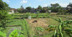Villa Chickasaw in Kerobokan – AY218